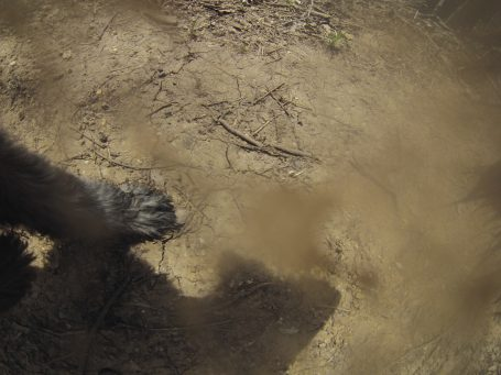 Dirty camera lens.